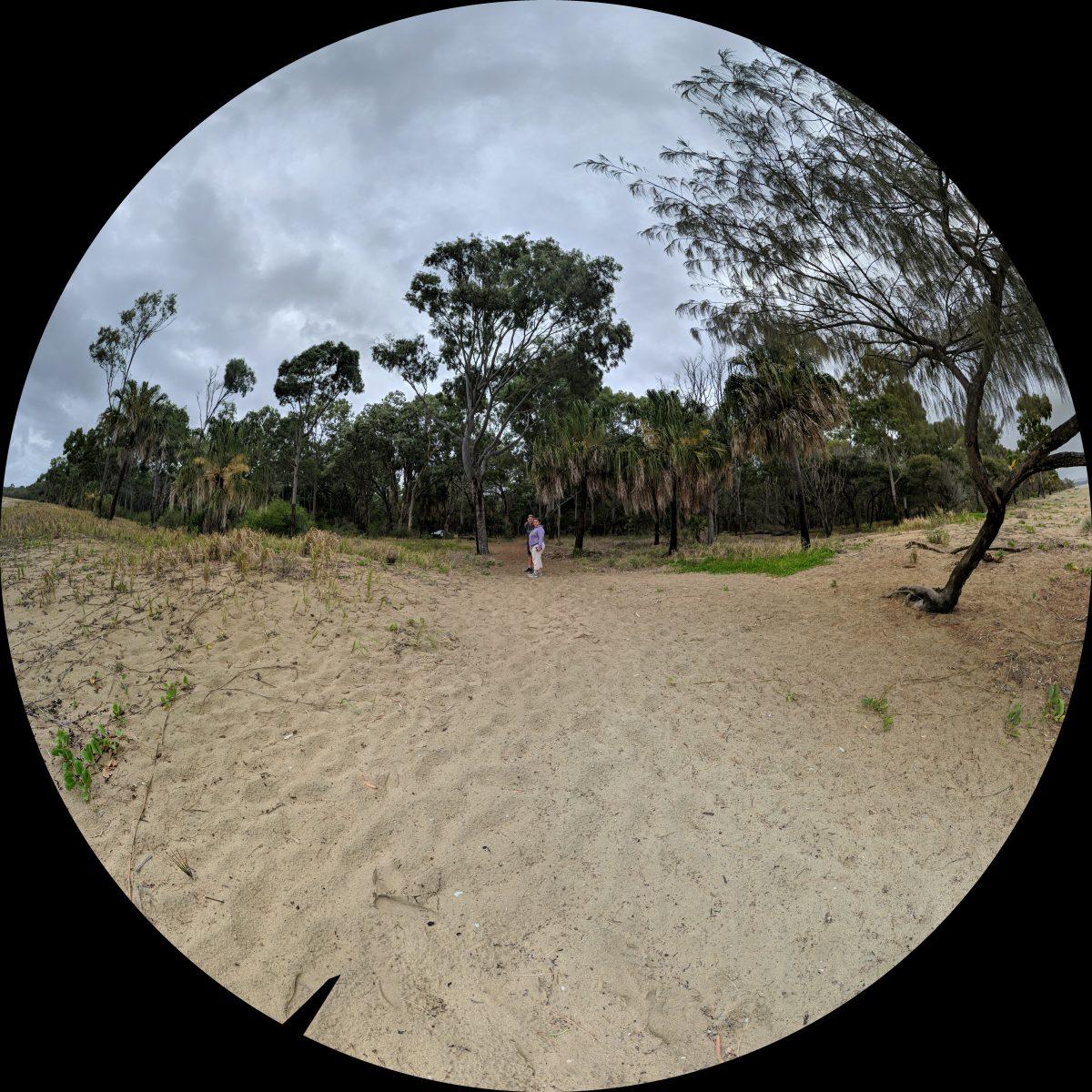 Day 2 – Eurimbula National Park